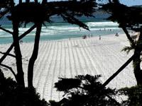 Arlington-West-Carmel-Beach